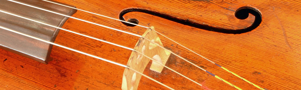 Closeup of a cello f-hole and bridge
