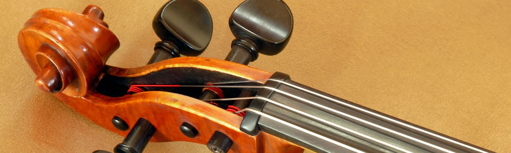 Angled closeup of a cello pegbox